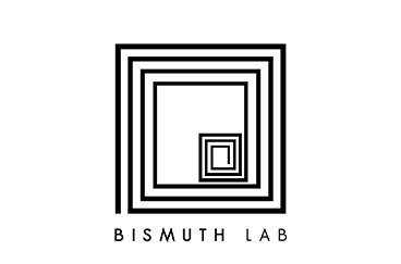 Bismuth Lab Logo Miss Eco CZ